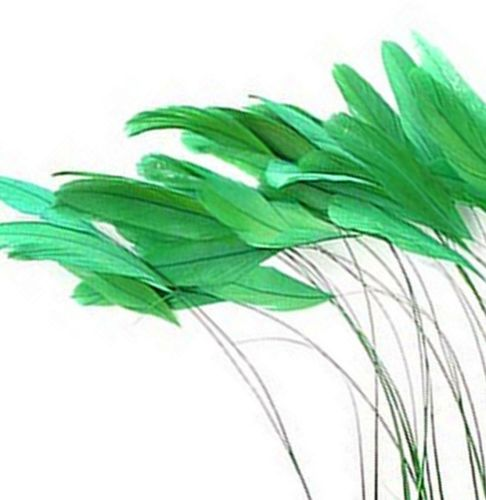 Green Trimmed Rooster Coque Tail Feathers - Clearout