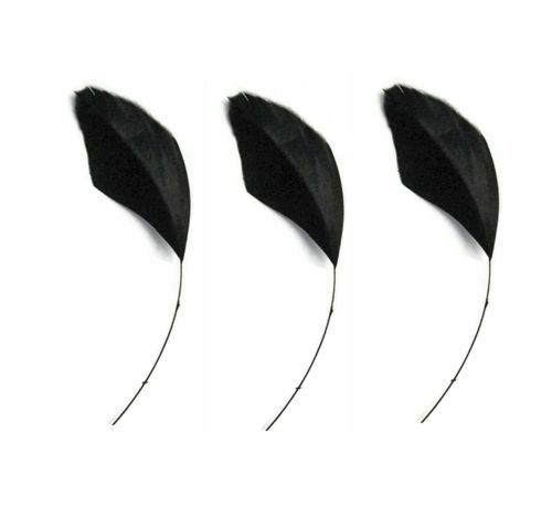 Black Trimmed Goose Teardrop Feathers - Clearout