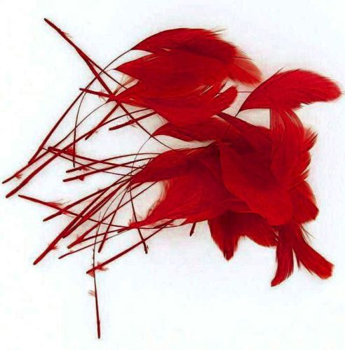 Red Trimmed Rooster Coque Tail Feathers - Clearout