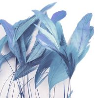 Pale Blue Stripped Coque Tail Rooster Feathers x 6