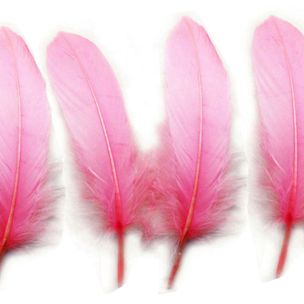 Candy Pink Goose Quill Feathers x 4