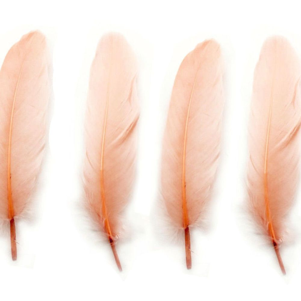 Peach Goose Quill Feathers x 4