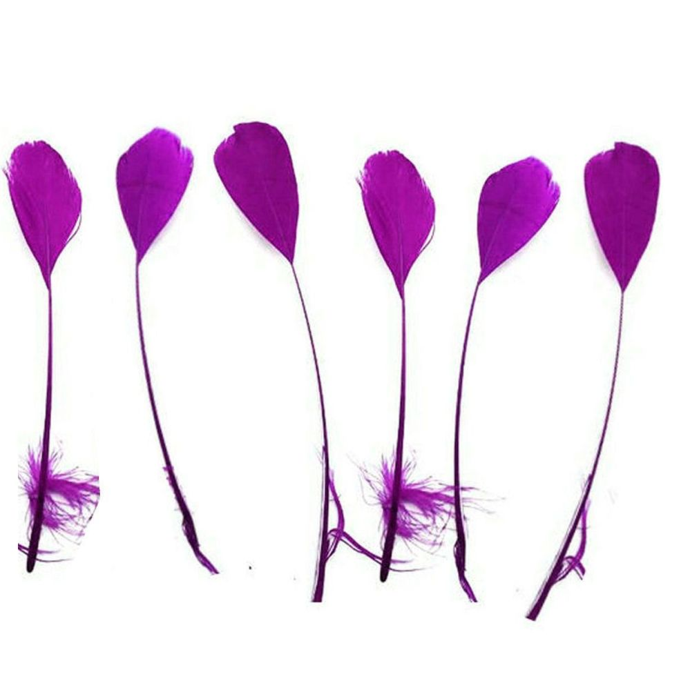 Purple Stripped Coque Tail Rooster Feathers x 10