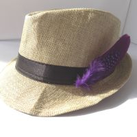 Purple Decorative Hat Feather Brooch