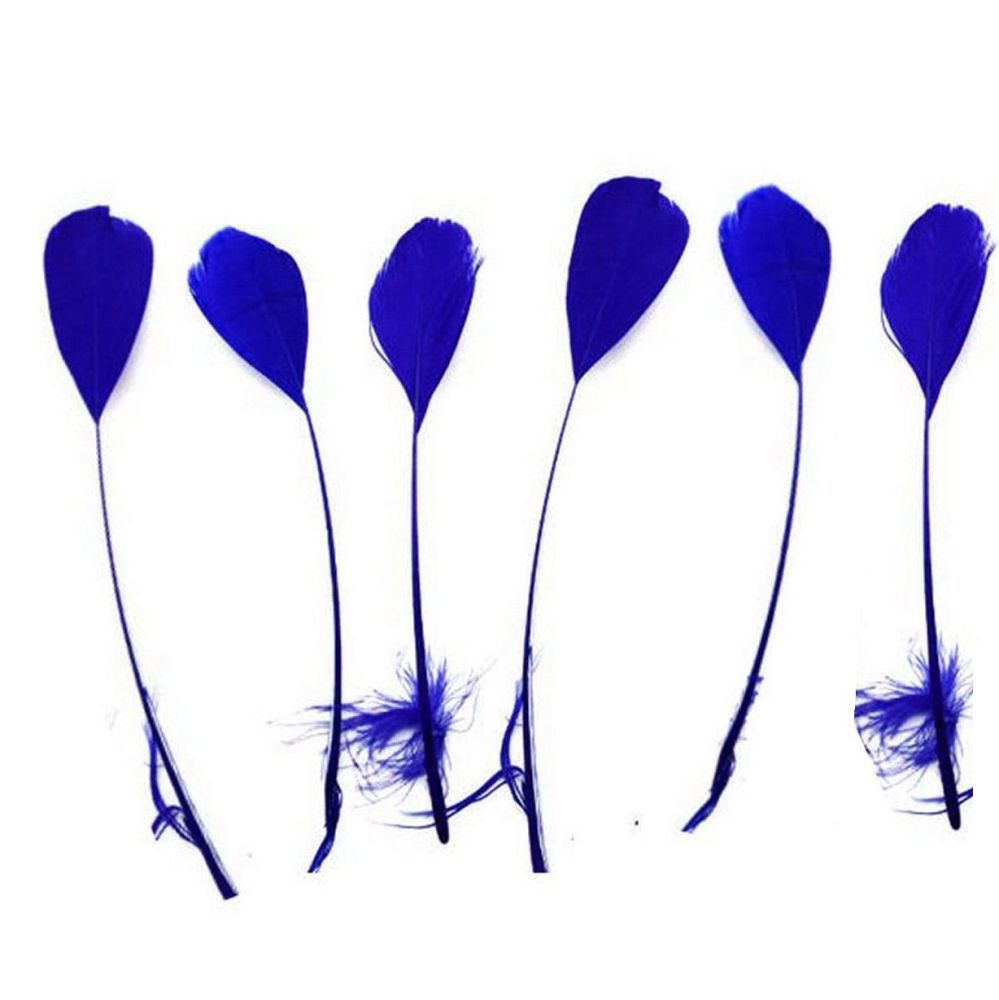 Royal Blue Stripped Coque Tail Rooster Feathers x 10