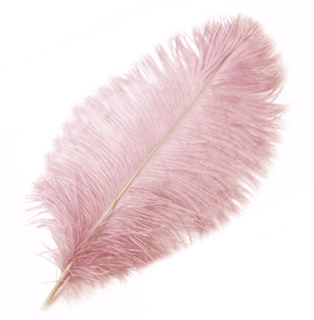 Dusky Rose Ostrich Feather