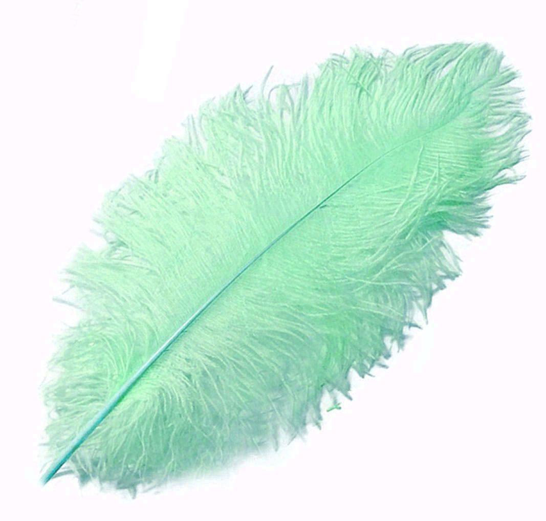Mint Green Ostrich Feather