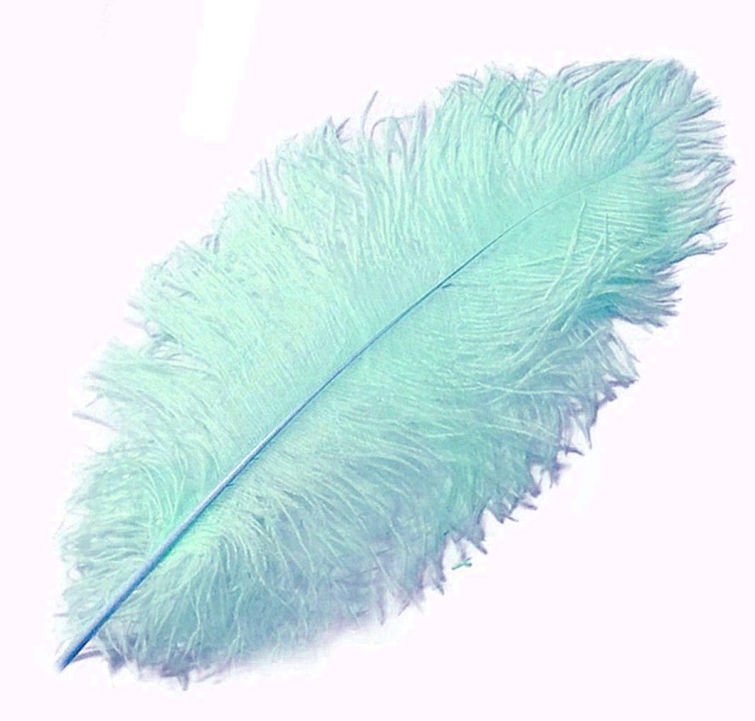 Pale Sea Blue Ostrich Feather