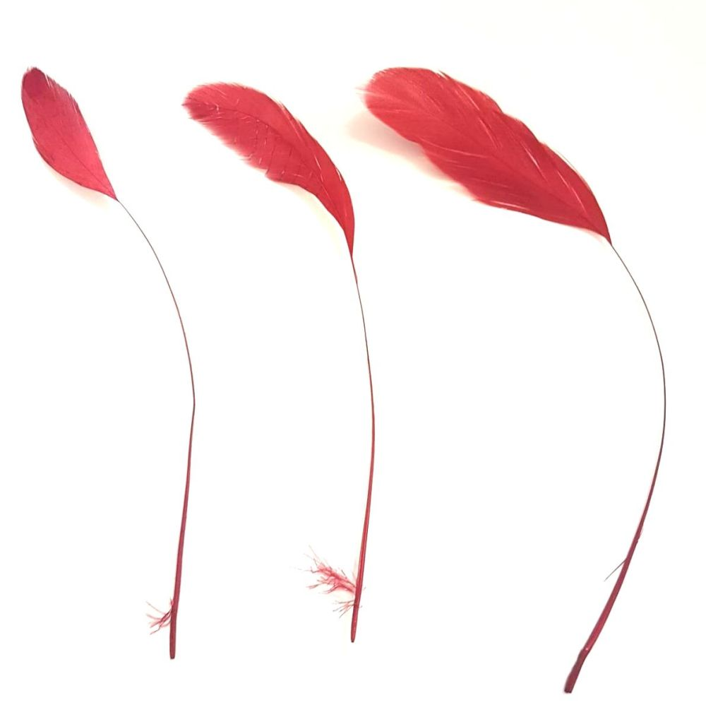 Red Wine Stripped Coque Tail Rooster Feathers x 6