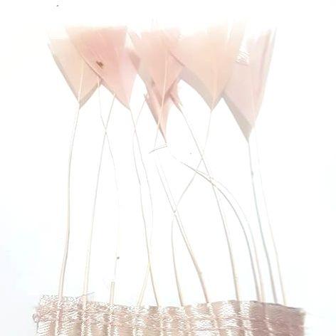 Dusky Pale Pink Stripped Turkey Feathers, Strung x 10