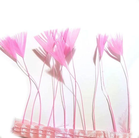 Pink Stripped Turkey Feathers, Strung x 10