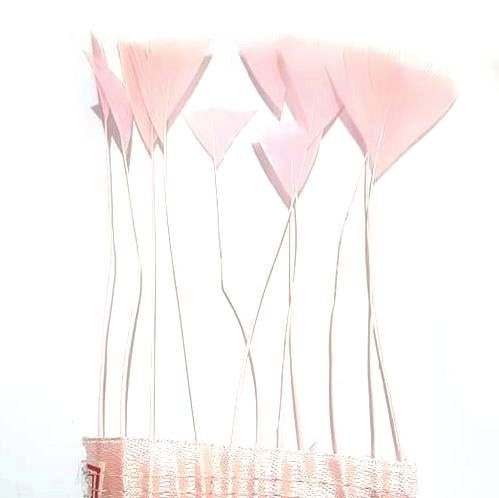 Baby Pink Stripped Turkey Feathers, Strung x 10