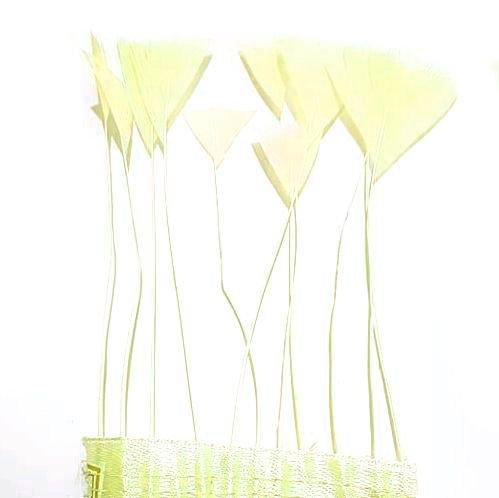 Pale Yellow Stripped Turkey Feathers, Strung x 10