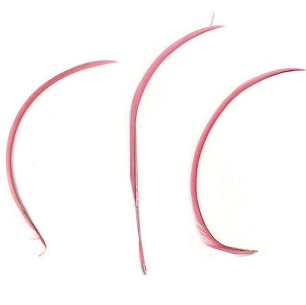 Rose Pink Goose Biot Feather x 1