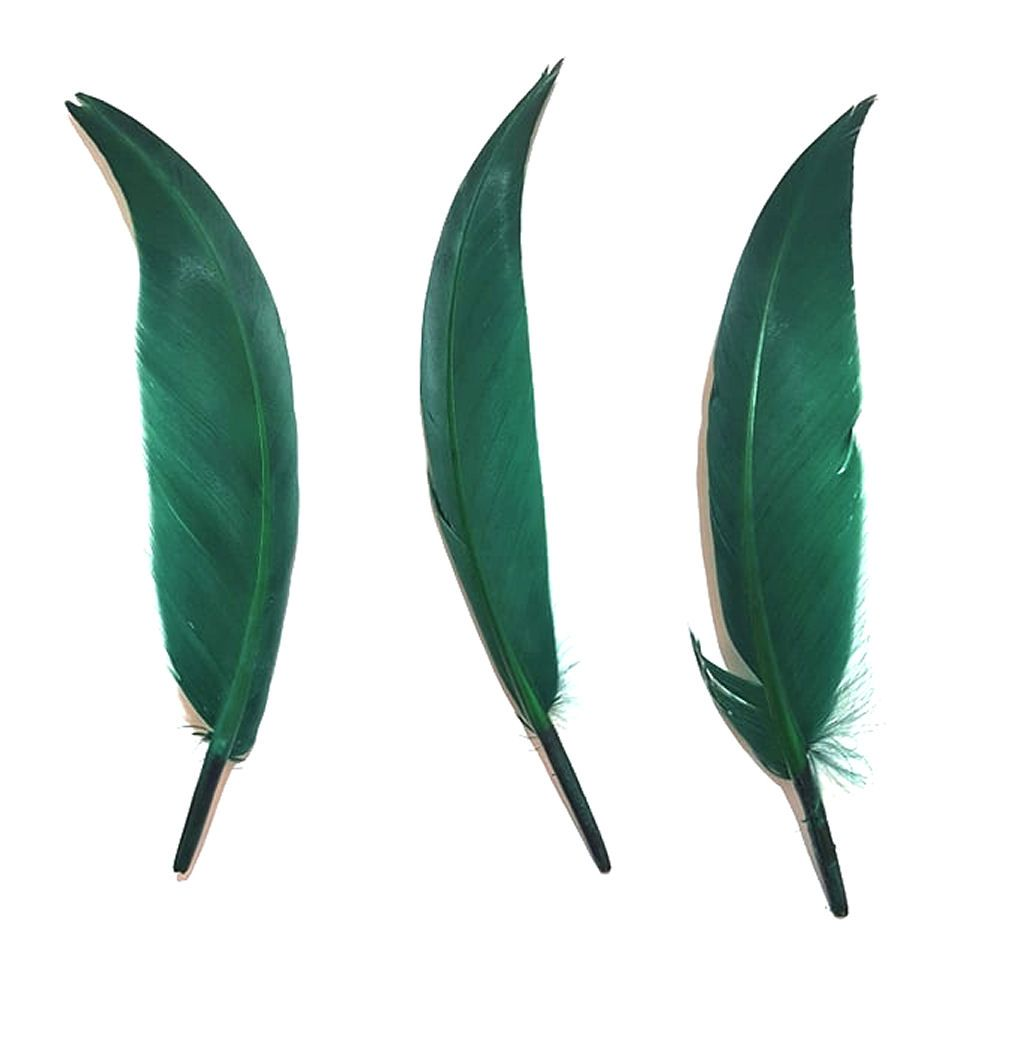 Dark Green Pointed Goose Quill Feathers x 5