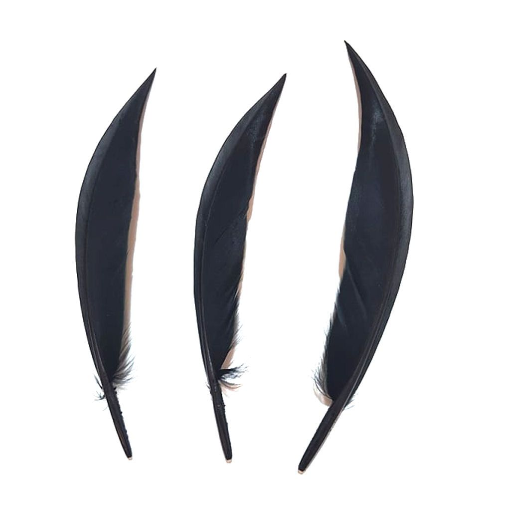 Black Pointed Goose Quill Feathers x 5
