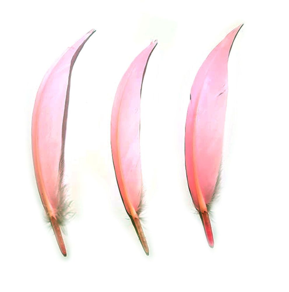 Light Pink Pointed Goose Quill Feathers x 5