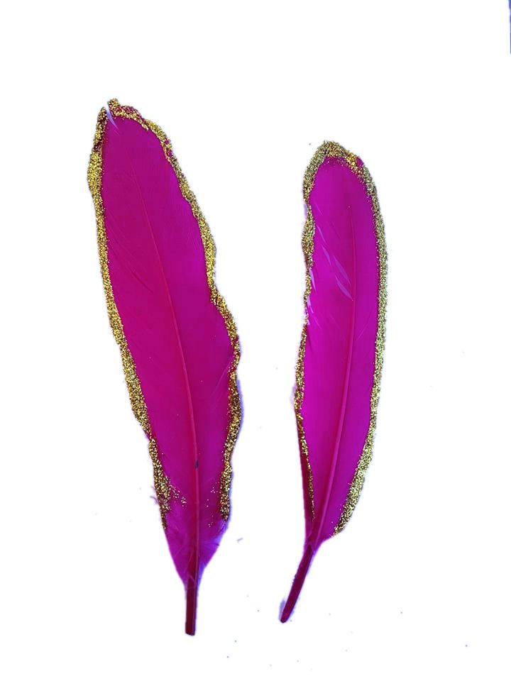 Dark Pink and Gold Goose Quill Feathers x 4