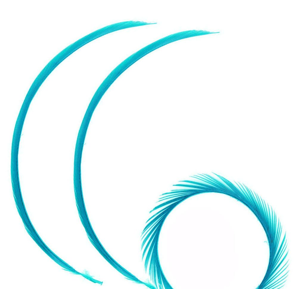 Turquoise Goose Biot Feather