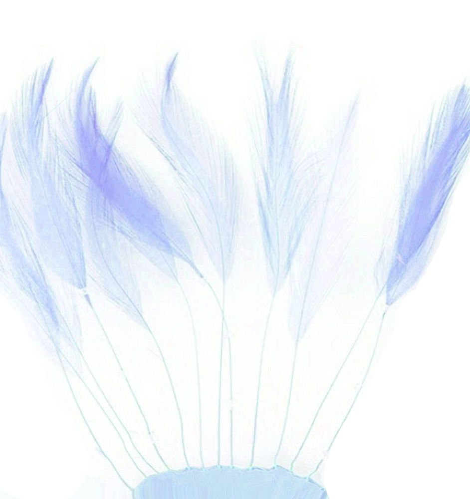 Pale Blue Rooster Feathers Hackles Stripped x 10
