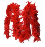 Red Feather Boa Fashion Accessory
