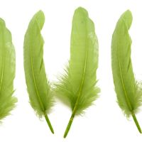 Moss Green Goose Quill Feathers x 4