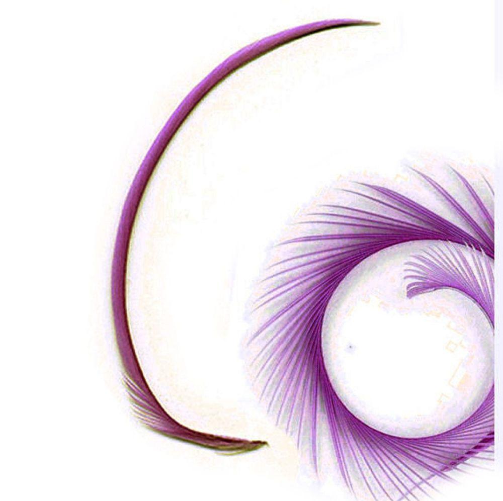 Purple Grape Goose Biot Feather