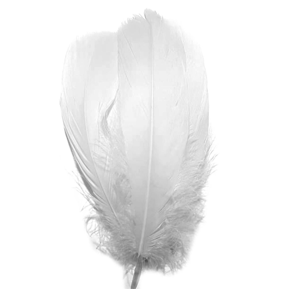 White Parried Goose Feathers x 5