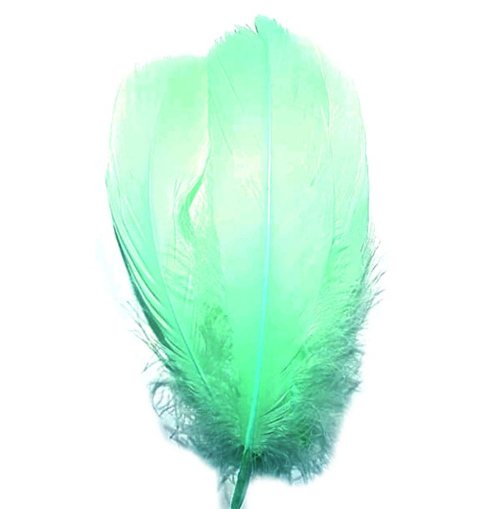 Mint Green Parried Goose Pallette Feathers x 5