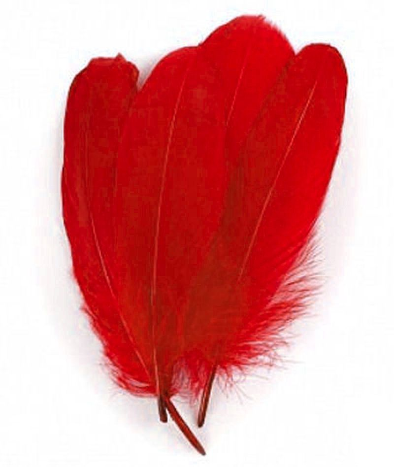 Red Parried Goose Pallette Feathers x 5