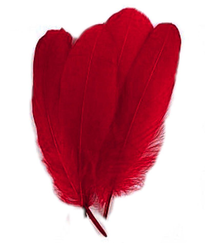 Dark Red Parried Goose Pallette Feathers x 5