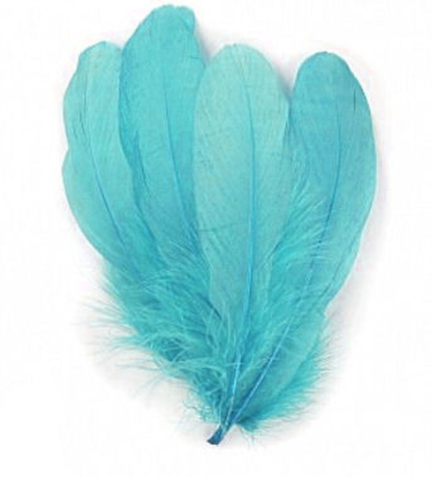 Turquoise Parried Goose Pallette Feathers x 5
