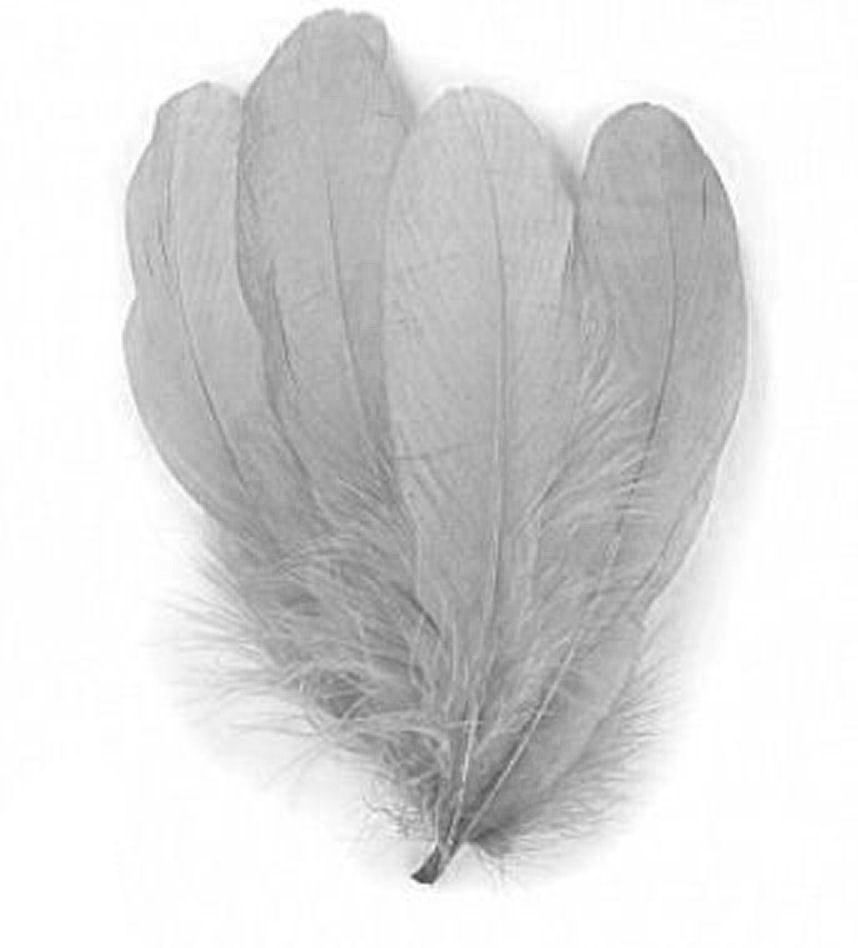 Silver Grey Parried Goose Pallette Feathers x 5