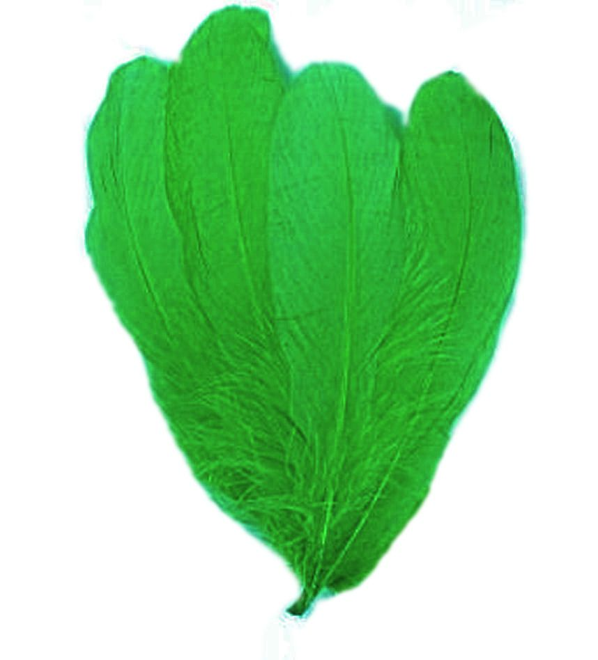Green Parried Goose Pallette Feathers x 5