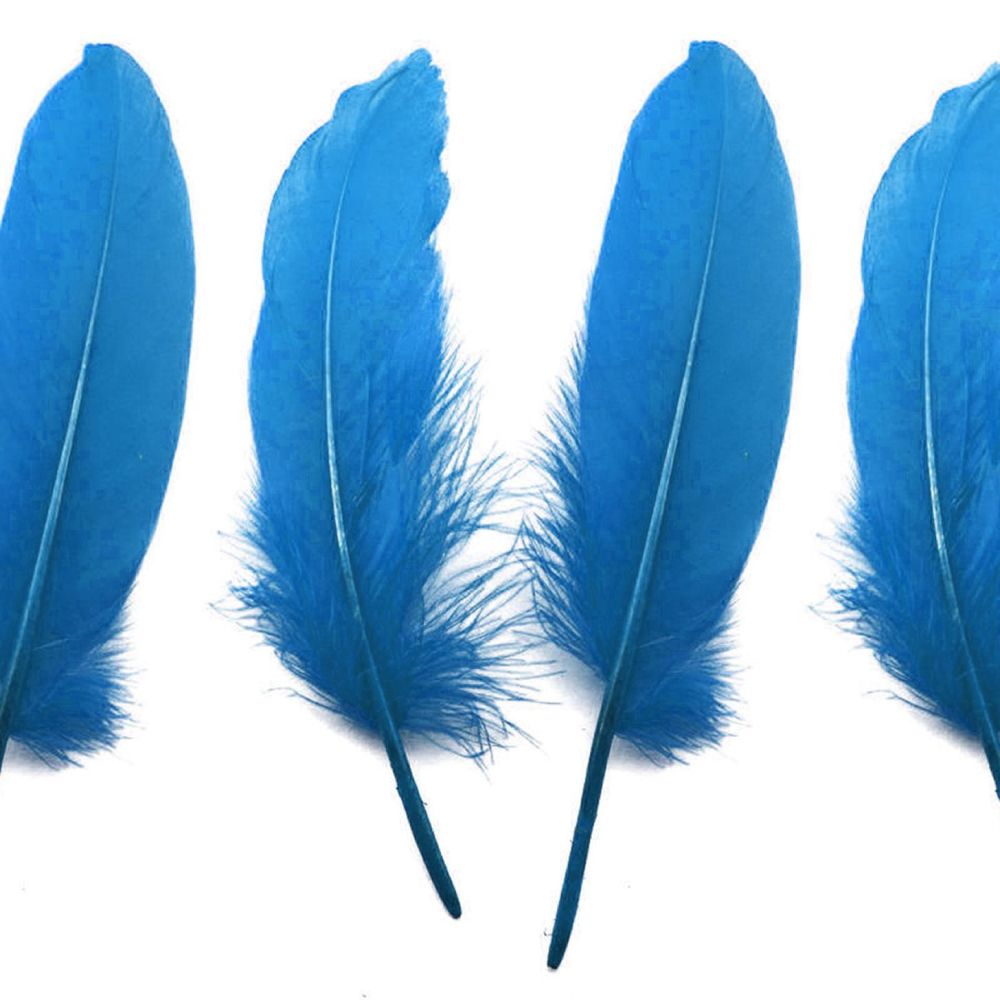 Blue Goose Quill Feathers x 4