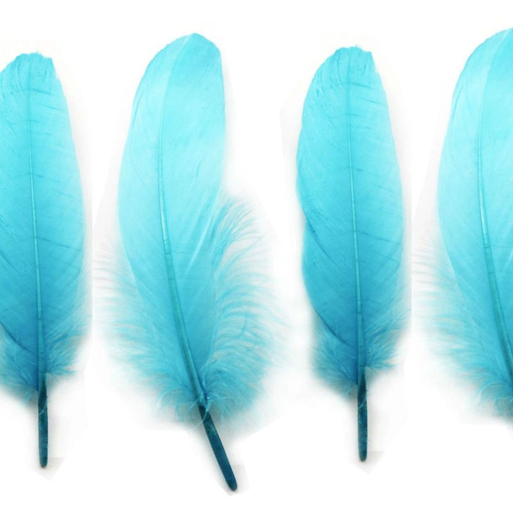 Turquoise Blue Goose Quill Feathers x 4