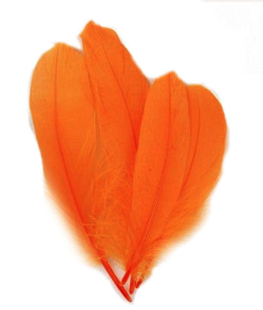 Orange Parried Goose Pallette Feathers x 5