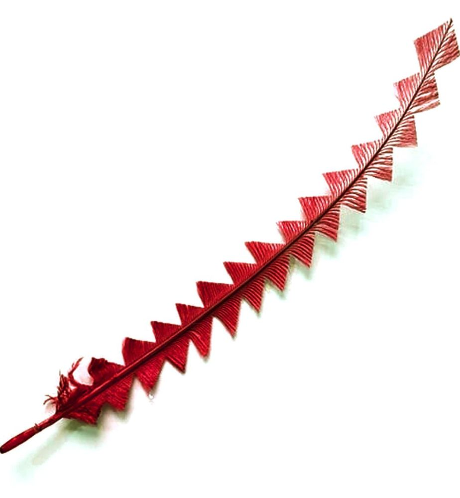 Red Ostrich Feather Long Trimmed Zig Zag Cut