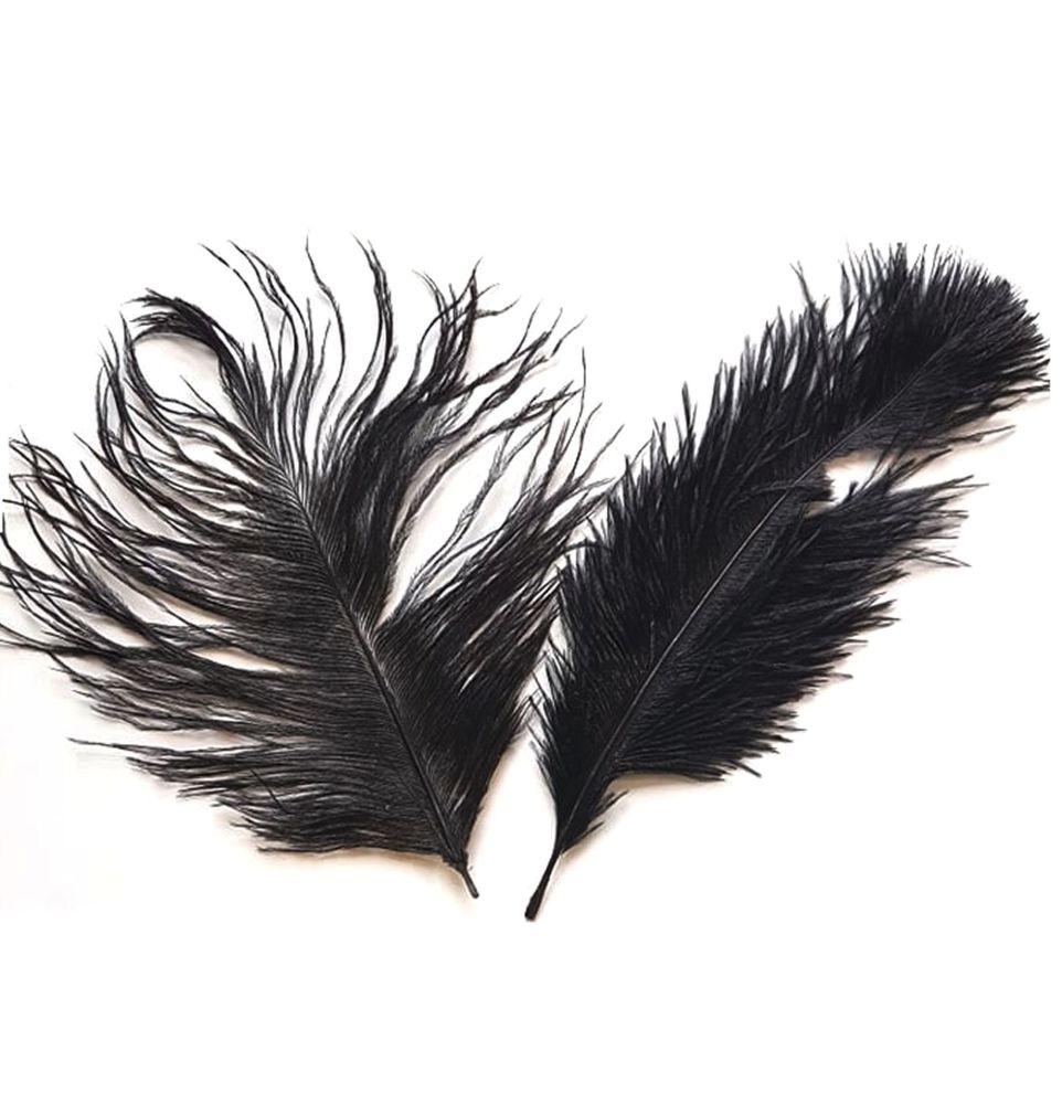 Black Ostrich Feather x 5 Seconds
