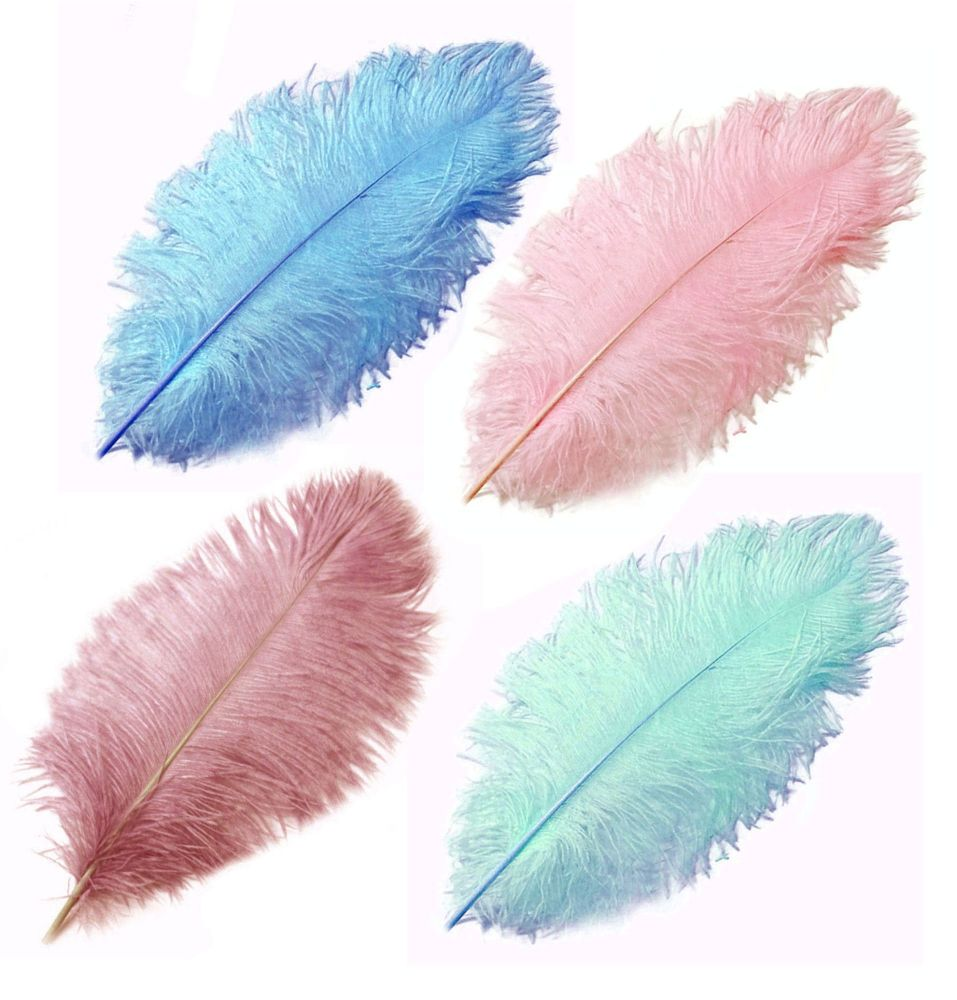 Pink and blue ostrich feathers