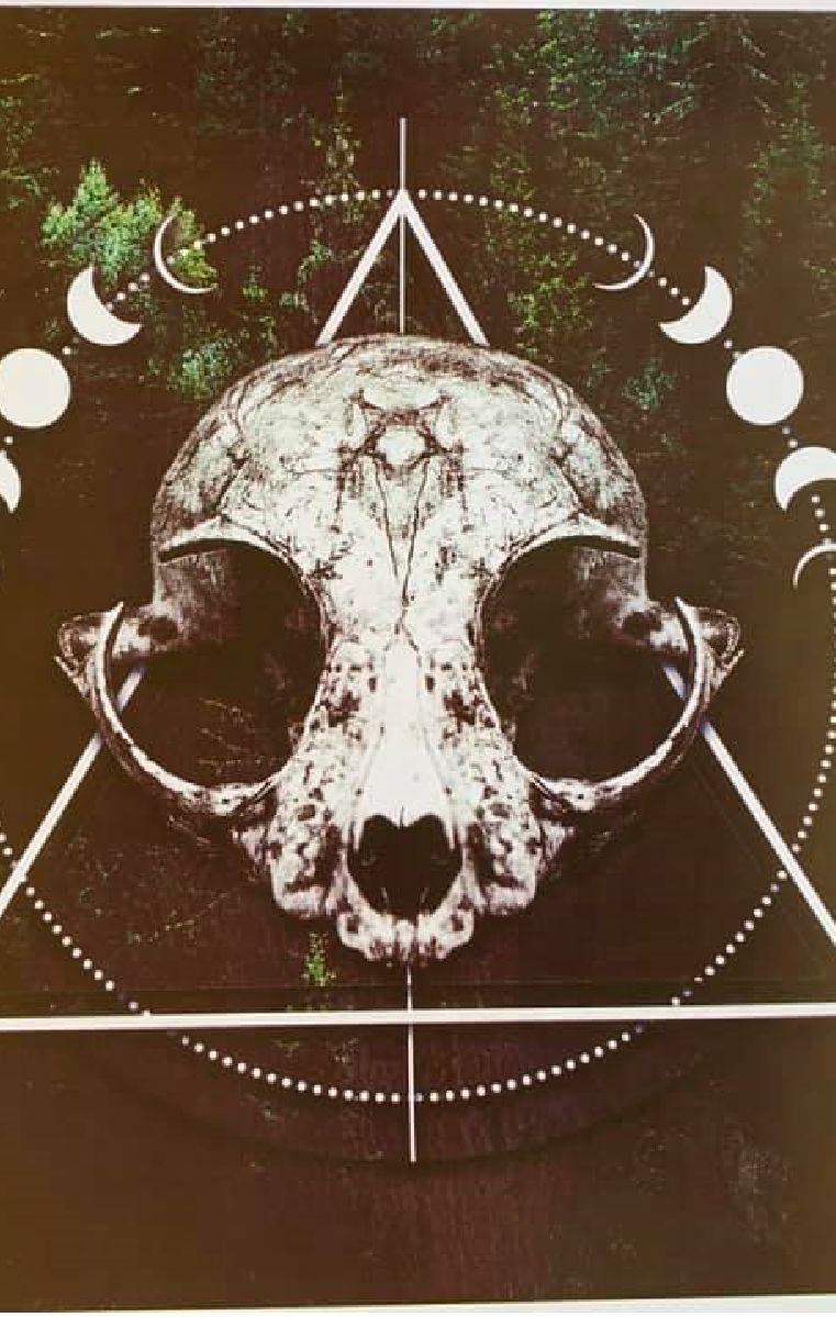 Forest Skull Print