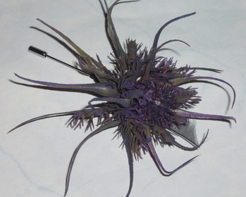Thistle Pin Buttonhole Scottish Wedding Bridal Prom Evening Wear