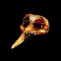 Gran Capitano Musica Masquerade Mask