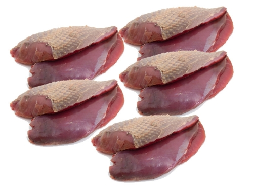 Border Pigeon Breasts