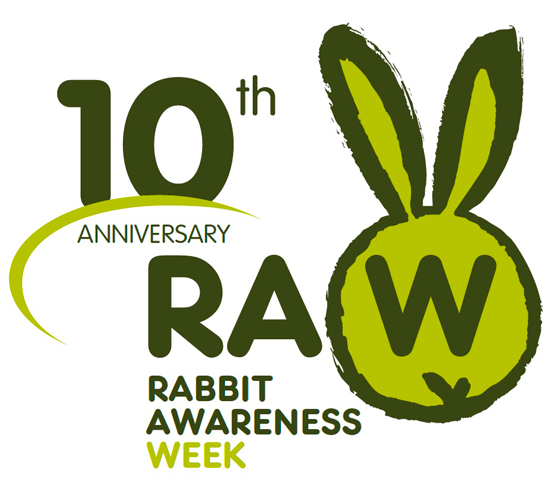 raw 2016 logo
