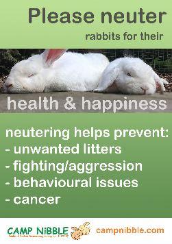 neutering poster