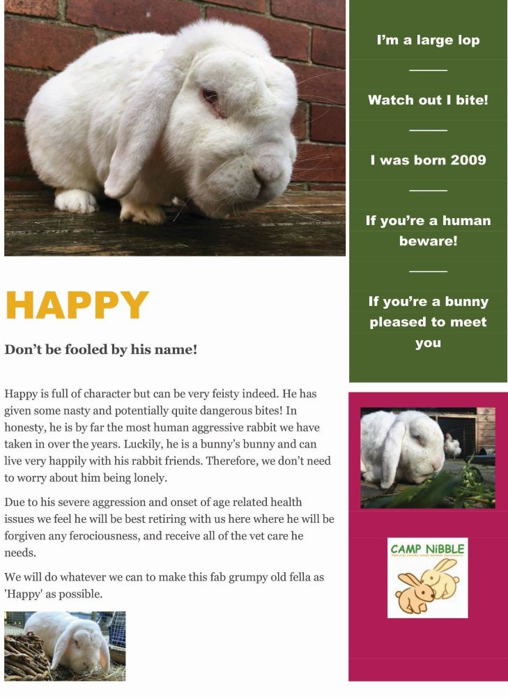 happy info sheet pdf jpg