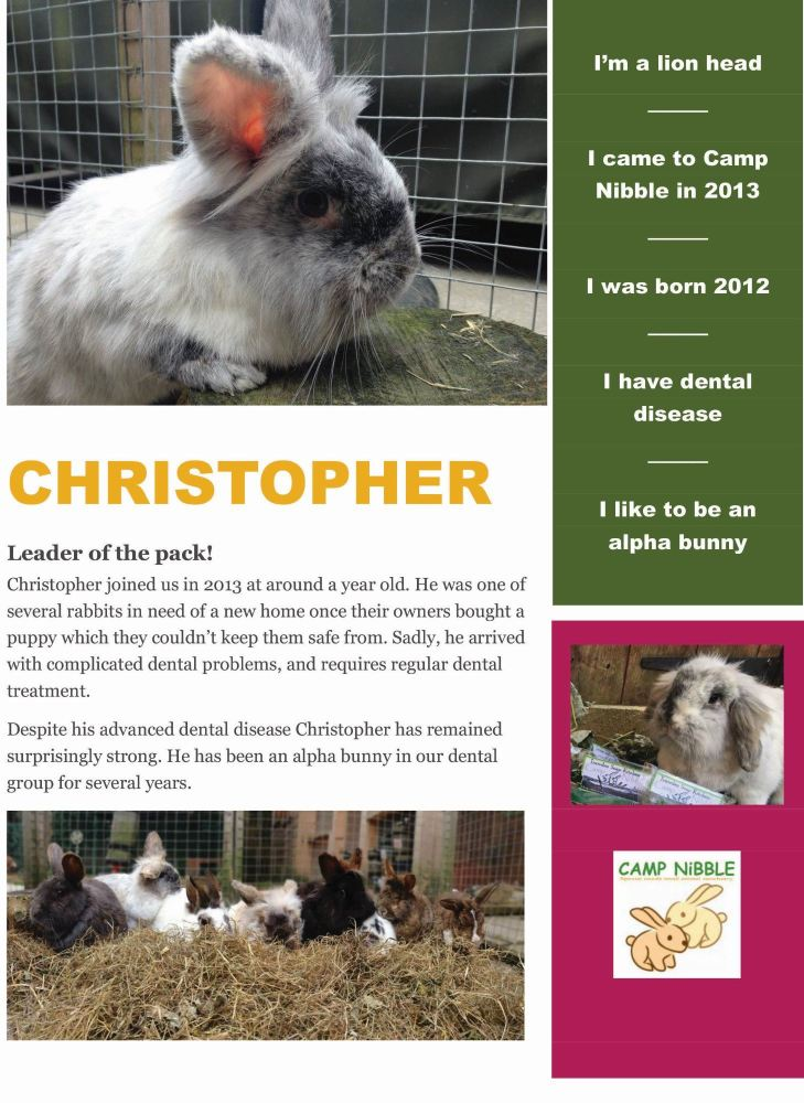 christopher info sheet pdf jpg