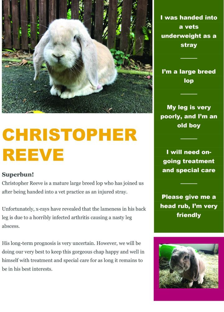 christopher reeve info sheet jpg