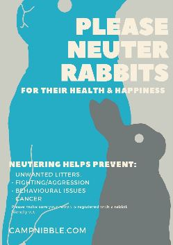 please neuter rabbits poster new